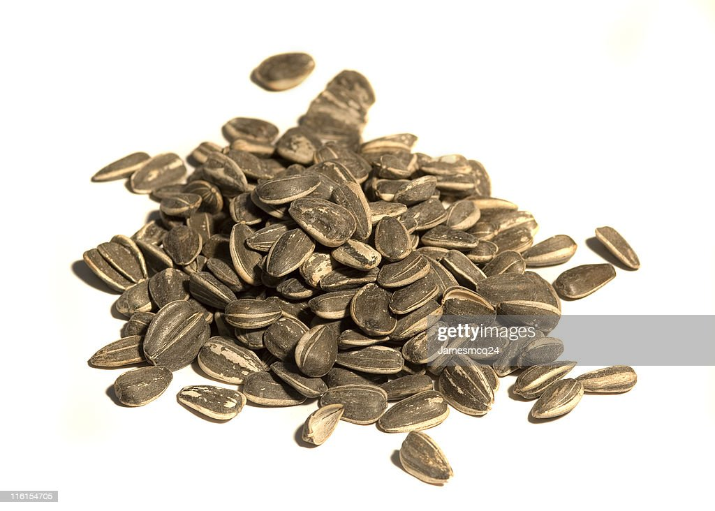 Isolated Pile of Sunflower Seeds