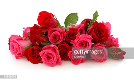 Isolated Pink Roses Bouquet