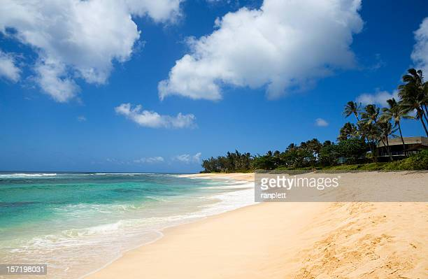 Isolated Tropical Beach