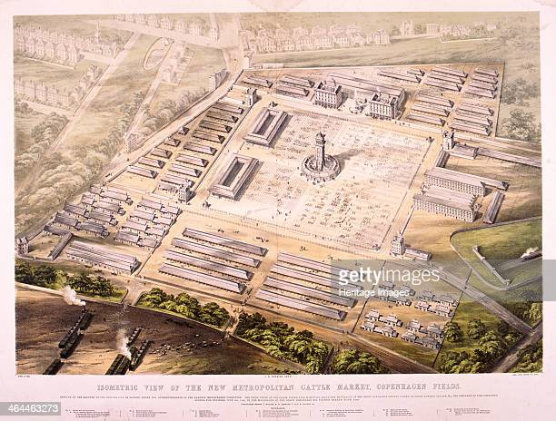Isometric view of the Metropolitan Cattle Market Copenhagen Fields Islington London 1855 The market was also known as Caledonian Market