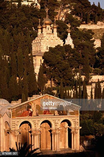 Garden Of Gethsemane Stock Photos and Pictures Getty Images