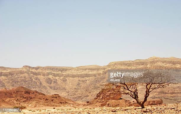 Israël nature sauvage