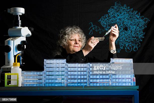 Israeli Professor Ada Yonath is the 2008 laureate for Europe at the L'OREALUNESCO Award For Women in Science for structural studies of the...