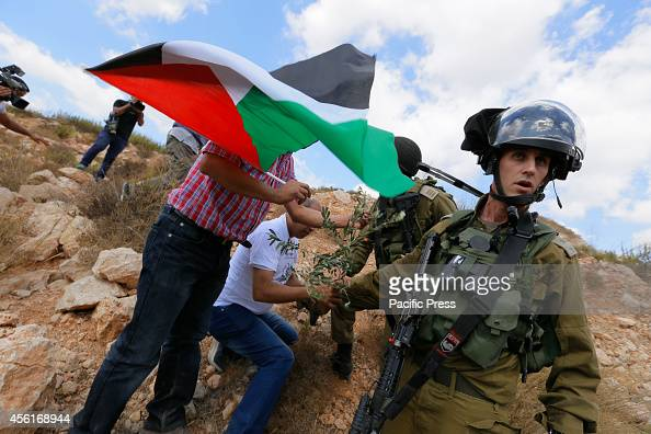 Israeli soldiers stop Palestinian villagers from farming Olive trees in the confiscated Arab land during a demonstration in the village of Wadi Fukin...