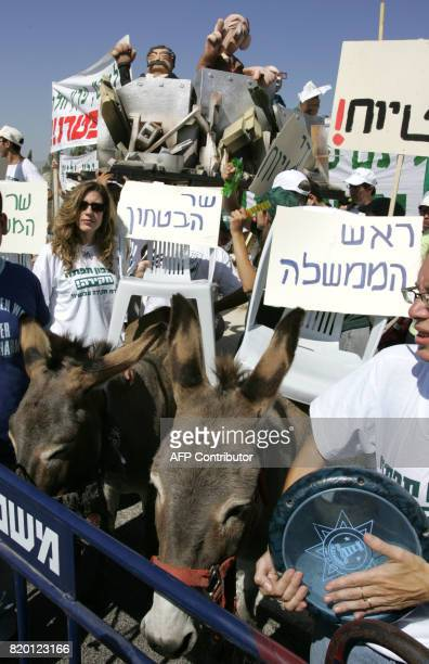Israelis protest holding up banners and leading donkeys with empty seats bearing the names 'Prime Minister' and 'Defence Minister' and a platform...