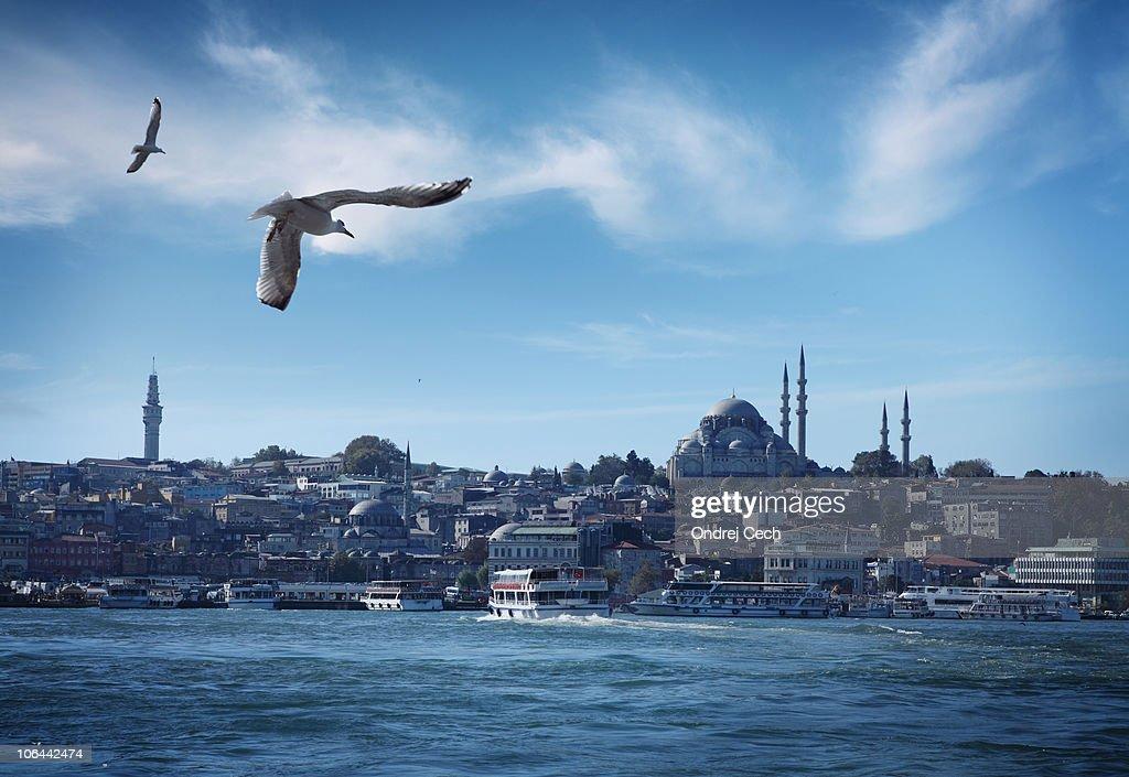 Istanbul and Bosporus Strait Panorama