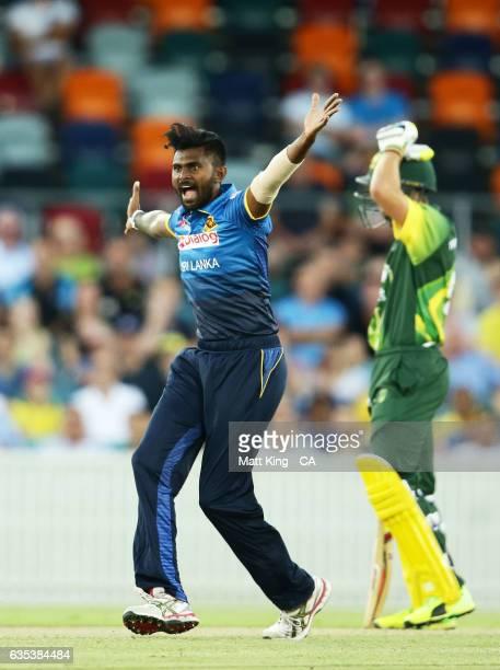 Isuru Udana of Sri Lanka appeals during the T20 warm up match between the Australian PM's XI and Sri Lanka at Manuka Oval on February 15 2017 in...