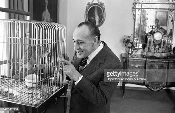 Italian actor Tot˜ talking to his parrot Rome 1966