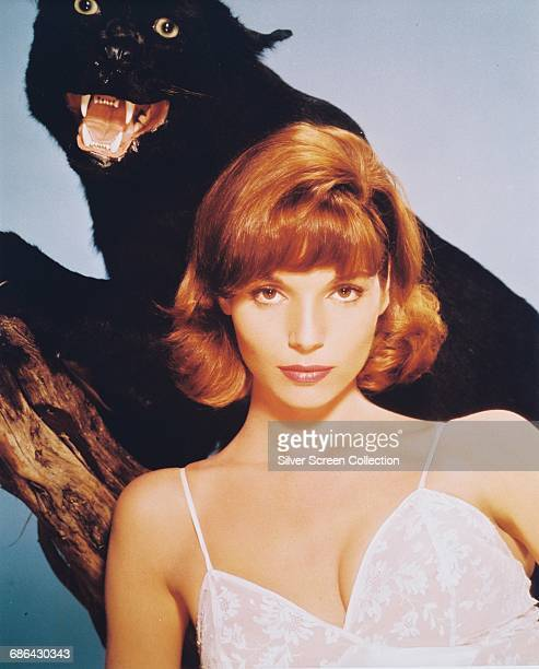 Italian actress Elsa Martinelli poses with a stuffed black panther in a publicity still for the film 'Rampage' 1963