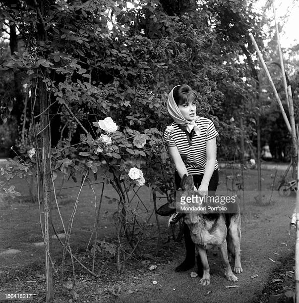 Italian actress Gina Lollobrigida walking with a dog in a rose garden 1960s