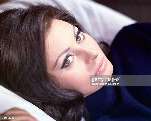 Italian actress Sophia Loren November 1964