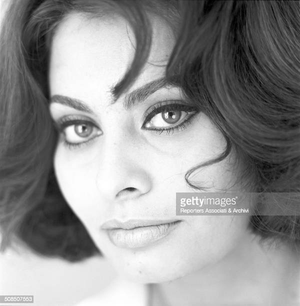 Italian actress Sophia Loren posed for a portrait in the studio photo 1962