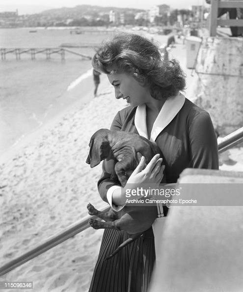Italian actress Sophia Loren wearing a shirt and a black pleated skirt holding a basset hound and a handbag Cannes' seashore on the bakground 1955