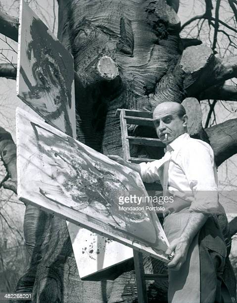 Italian artist Lucio Fontana hangs some canvas on the great trunk of a tree in the garden of his Milanese study in Corso Monforte standing against a...