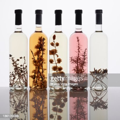 Italian Brandy (Grappa) : Stock Photo
