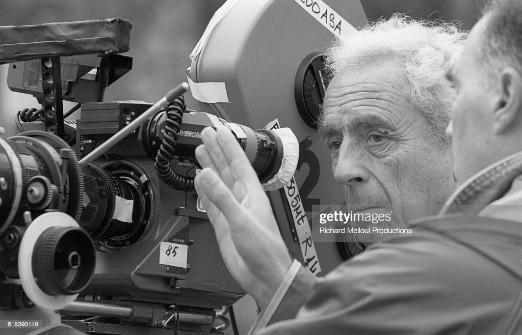 michelangelo antonioni interview