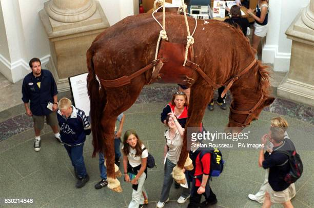 Italian Maurizio Cattelan's Taxidermic Horse with Leather Harness in the Tate Gallery in London part of Abracadabra a provocative new show billed as...