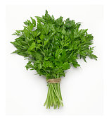 A bunch of Italian parsley on white with soft shadow.