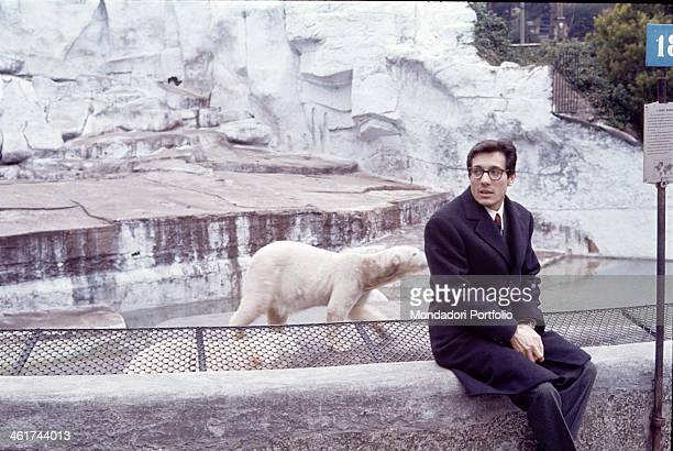 Italian singersongwriter and standup comedian Enzo Jannacci sits on the edge of the cage of the polar bear of which can be seen two little specimens...