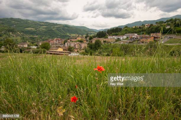 Italian town of Bobbio from a nearby meadow