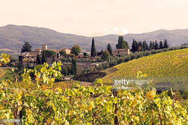 Italian Village and Vineyard in Fall