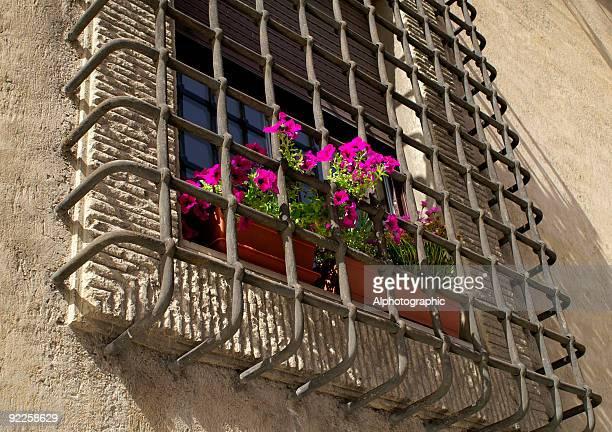 Italian Window