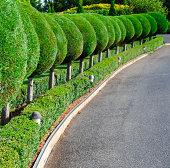 Italianate garden of Rebecca