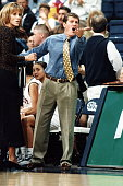 Italianborn American basketball coach Geno Auriemma of the University of Connecticut protests form the bench during a game Storrs Connecticut 1995