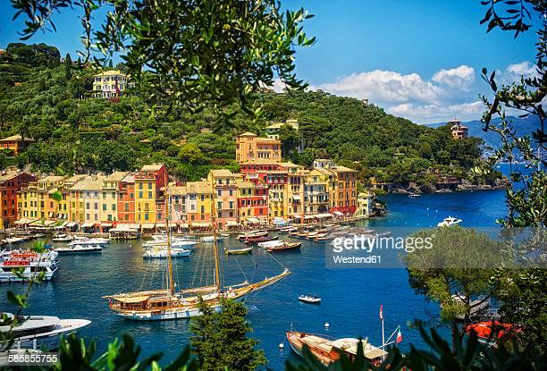 Italy, Liguria, Portofino, boats and row of houses