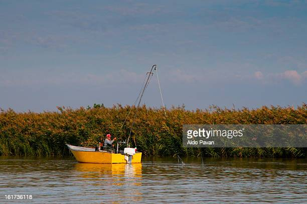 Italy, Porto Tolle, fisherman