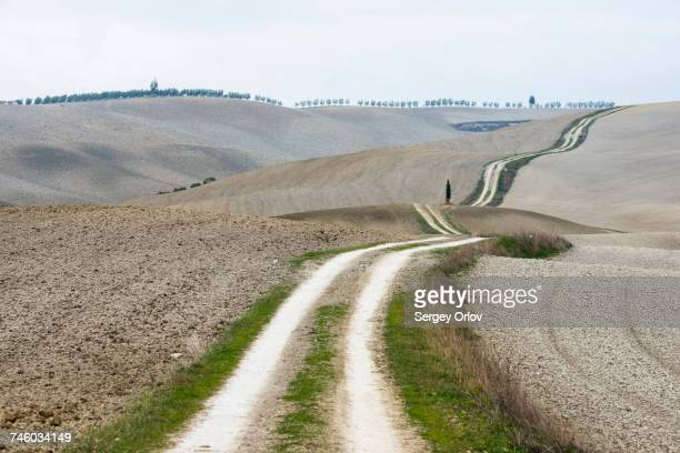 Italy, Tuscany, San Quirico Dorcia, Long twisting rural road leading through endless gray fields and lonely cypress trees