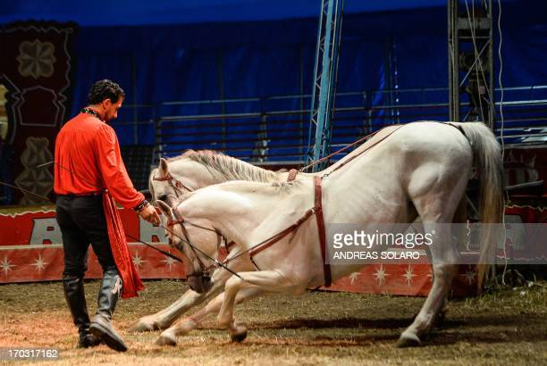 Italy's Rony Vassallo trainer of horses in Rony Roller's Circus performs during the show in a suburb of Rome on June 7 as part of their Summer Tour...