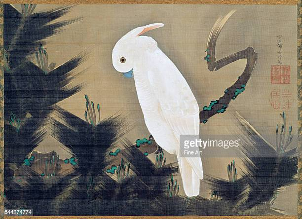Ito Jakuchu White Cockatoo on a Pine Branch late 18th century hanging scroll ink and color on silk 401 x 556 cm Museum of Fine Arts Boston