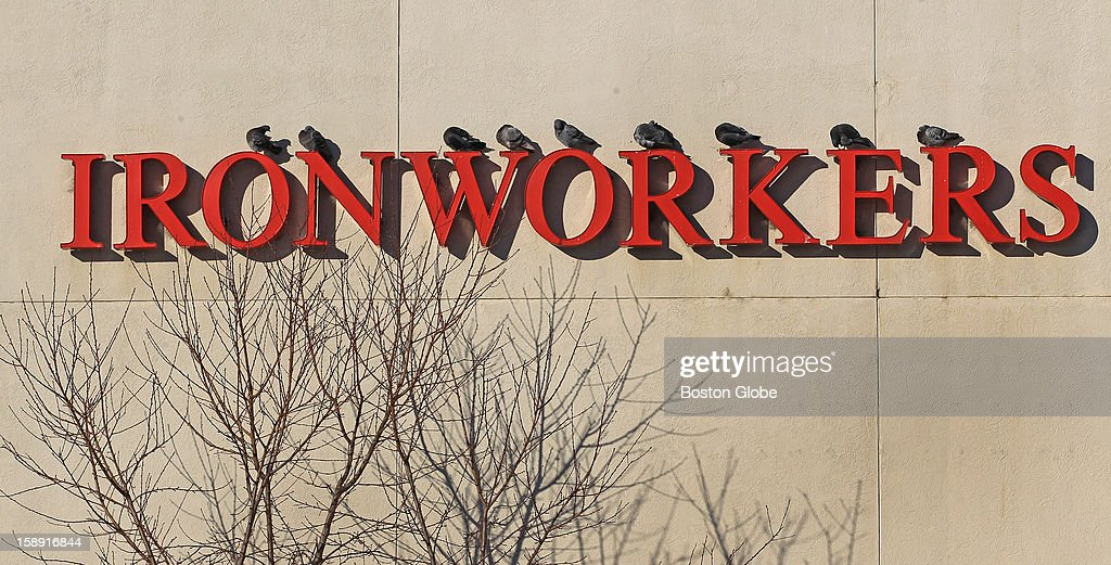 It's cold as steel out there as birds keep warm in the sun on top of a Local 7 union sign that reads, 'Ironworkers' in South Boston.