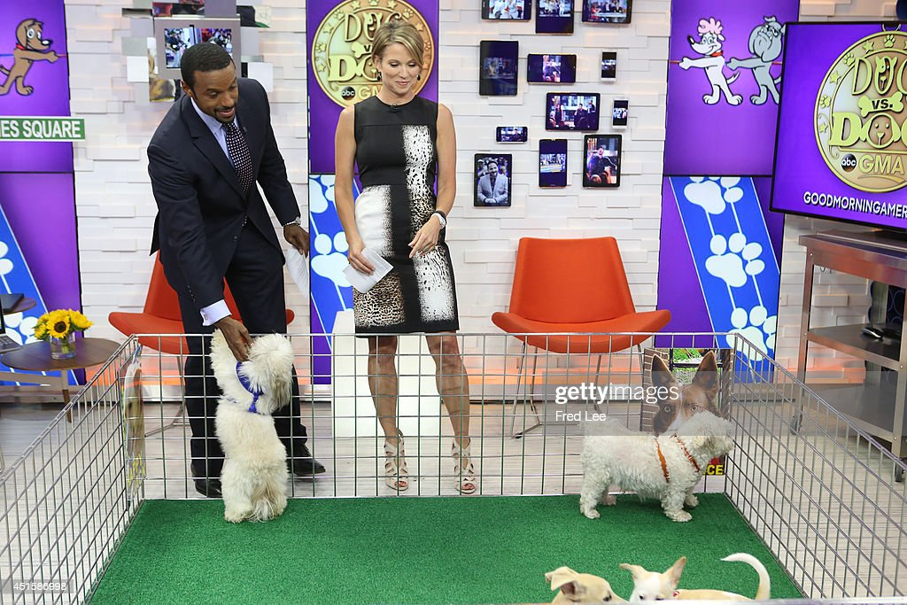 AMERICA - Its Dog Vs. Dog on 'Good Morning America,' 6/30/14, airing on the ABC Television Network.