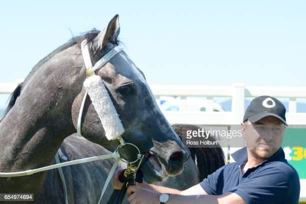 It's Pa after winning Robert Rose Plate at Yarra Valley Racecourse on March 19 2017 in Yarra Glen Australia