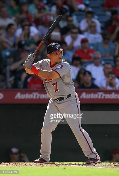 Ivan Rodriguez of the Washington Nationals bats against the Los Angeles Angels of Anaheim at Angel Stadium of Anaheim on June 29 2011 in Anaheim...