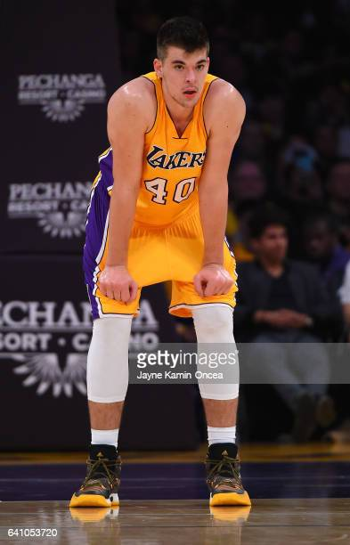 Ivica Zubac of the Los Angeles Lakers in the game against the Denver Nuggets at Staples Center on January 31 2017 in Los Angeles California NOTE TO...