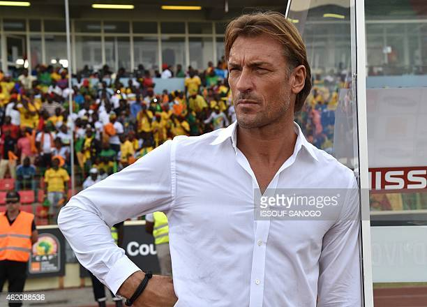 Ivory Coast's coach Herve Renard attends the 2015 African Cup of Nations group D football match between Ivory Coast and Mali in Malabo on January 24...