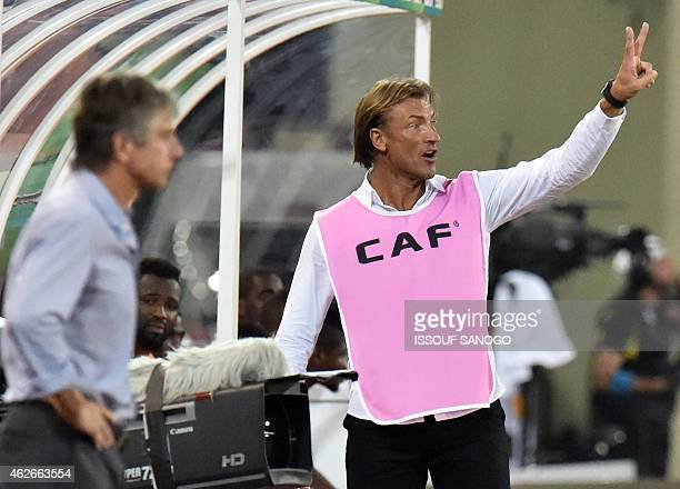 Ivory Coast's coach Herve Renard gestures during the 2015 African Cup of Nations quarter final football match between Ivory Coast and Algeria in...