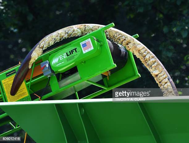 Ivory is put into a crusher during #IvoryCrush in Central Park in New York on August 3 where New York State Department of Environmental Conservation...