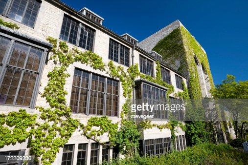 Ivy Covered Northwestern University