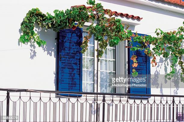 Ivy growing over a window of a house, Skiathos, Greece