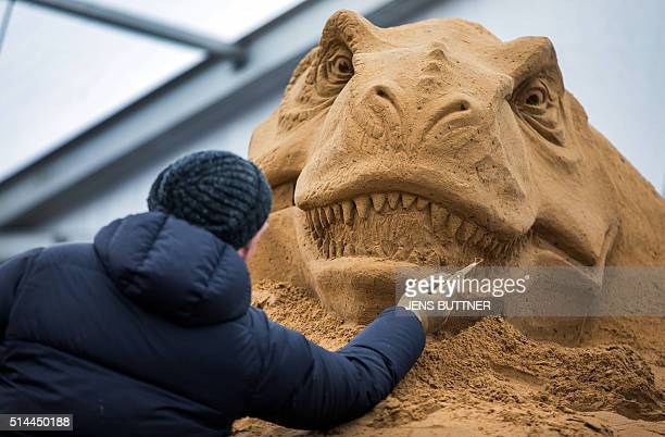 Iwan Zverev from Russia carves a dinosaurshaped sand sculpture on March 9 2016 in Binz on the Baltic Sea island of Ruegen northeastern Germany Around...