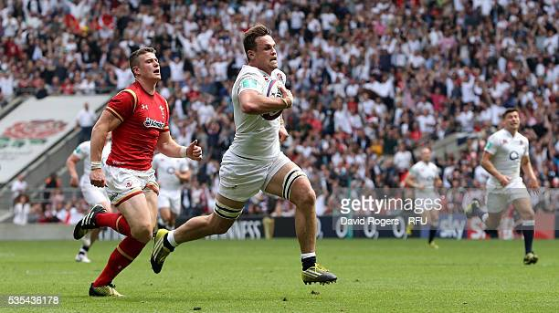 Jack Clifford of England breaks clear to score their fourth try during the England v Wales International match at Twickenham Stadium on May 29 2016...