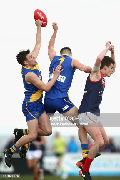 Jack Dorgan of Williamstown contests the ball during the VFL Qualifying Final match between Williamstown and Casey at Burbank Oval on September 2...