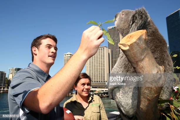 Jack Fox of the Rice Owls feeds gum leaves to Tabbi the koala during the 2017 US College Football Sydney Cup Launch at the Sydney overseas passenger...
