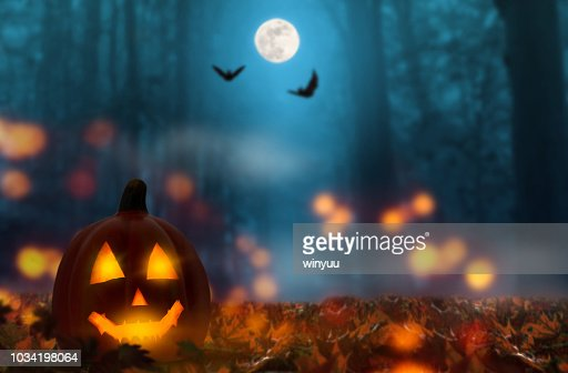 jack lantern in the halloween night : Stock Photo