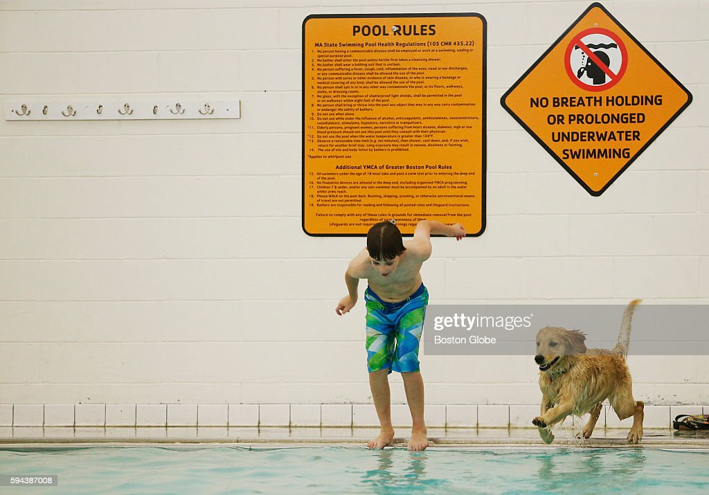Jack Mahony of Reading jumps into the pool with his puppy April at his side during the annual Puppy Swim at the Burbank YMCA in Reading Mass Aug 21...