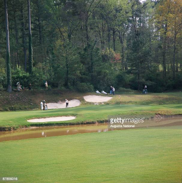 Augusta Golden Bell Stock Photos And Pictures